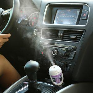 car air freshener bulk